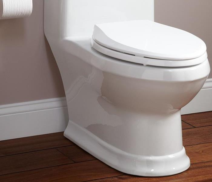 Water Damage Small Toilet leaks can lead to Large issues in your home
