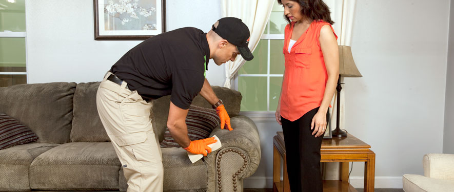 Federal Way, WA carpet upholstery cleaning
