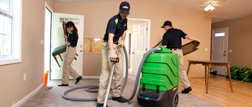 Federal Way, WA cleaning services
